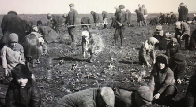 Geschichte Wissensfrage: Wann war eine schwere Hungersnot in der Ukraine namens Holodomor?