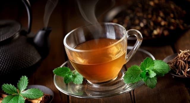 Культура Запитання-цікавинка: З якої рослини заварюють Копорський чай?