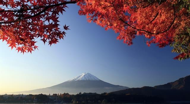 Kultur Wissensfrage: Wie heißt die Unterwelt in der japanischen Mythologie?
