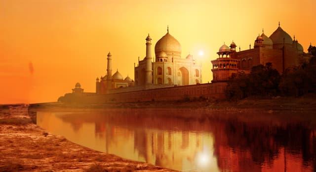 Культура Запитання-цікавинка: Яка тварина в Індії вважається священним?