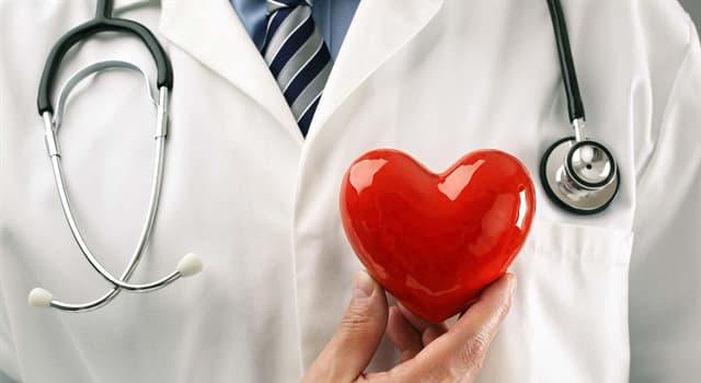 Наука Запитання-цікавинка: Який лікар займається лікуванням серцево-судинної системи людини?