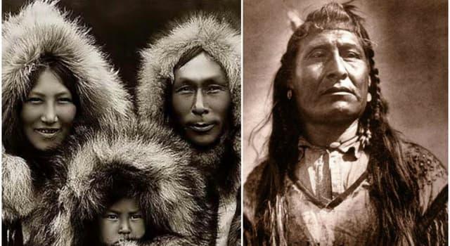 Суспільство Запитання-цікавинка: Чи правда, що ескімоси предки індіанців?