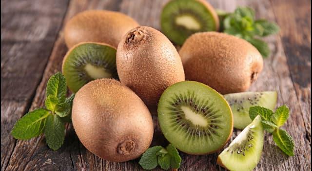 Wissenschaft Wissensfrage: Die Menge an Antioxidantien in der Schale von Kiwi ist viel höher, als im Fruchtfleisch.