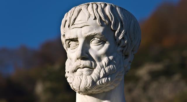 Культура Запитання-цікавинка: Скільки існує елементів буття, відповідно до Аристотеля?