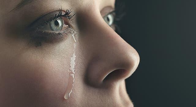 Наука Запитання-цікавинка: Що не входить до складу сліз?