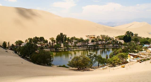 природа Запитання-цікавинка: Як називається місце в пустелі, де є рослинність і вода?