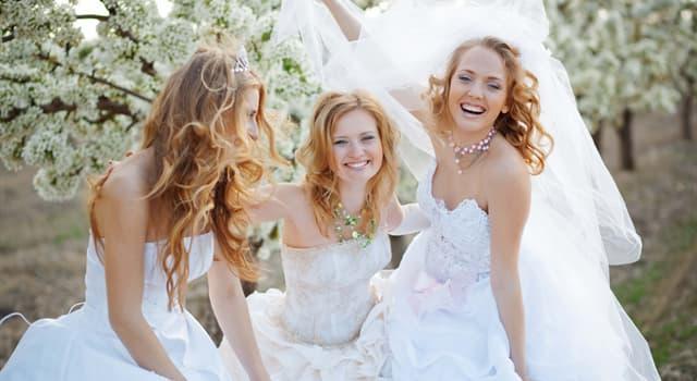 Культура Запитання-цікавинка: Який російський місто називають містом наречених?