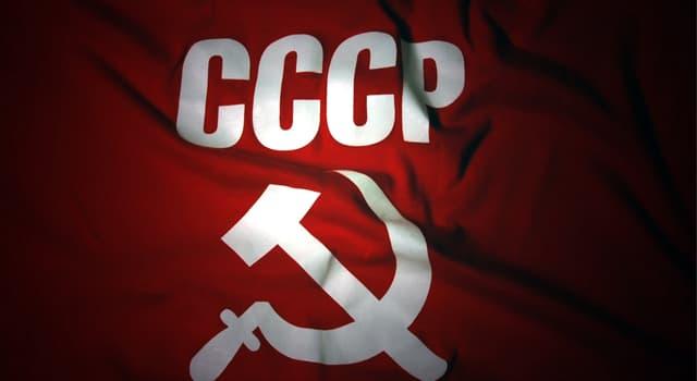 Спорт Запитання-цікавинка: Який вид єдиноборства виник в СРСР?