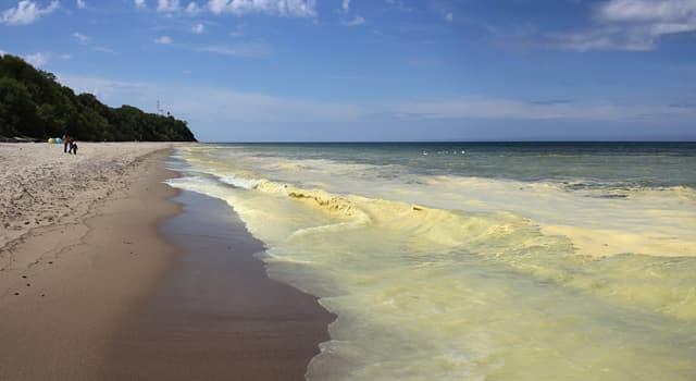 Geographie Wissensfrage: Wo liegt das Gelbe Meer?