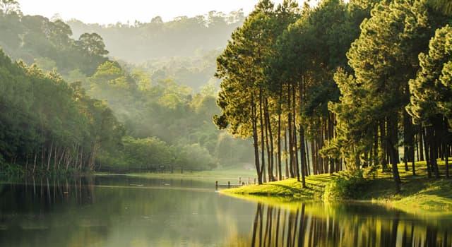 природа Запитання-цікавинка: Яких річок не буває?