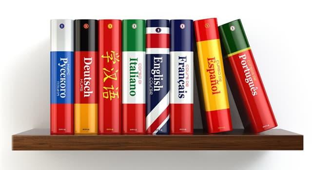 Наука Запитання-цікавинка: Яким терміном можна назвати вільне володіння двома мовами?
