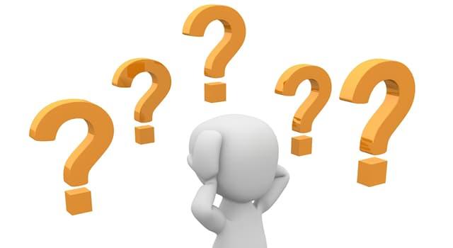 Natur Wissensfrage: Womit beschäftigt sich die Oologie?