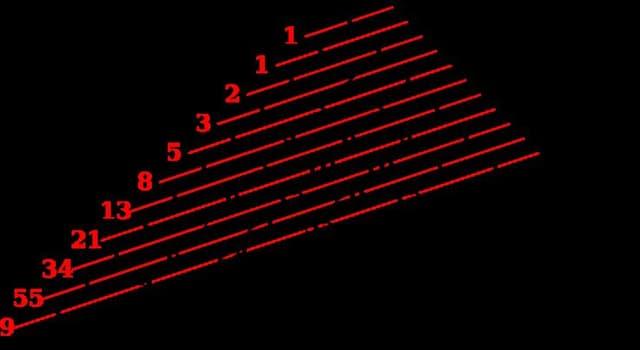 nauka Pytanie-Ciekawostka: 2, 3, 5, 7, 11, 13, 17,... jaka będzie następna liczba?