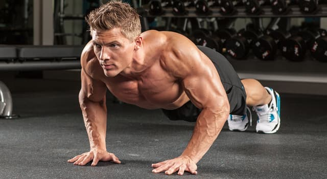 nauka Pytanie-Ciekawostka: Gdzie znajdują się mięśnie trójgłowe?