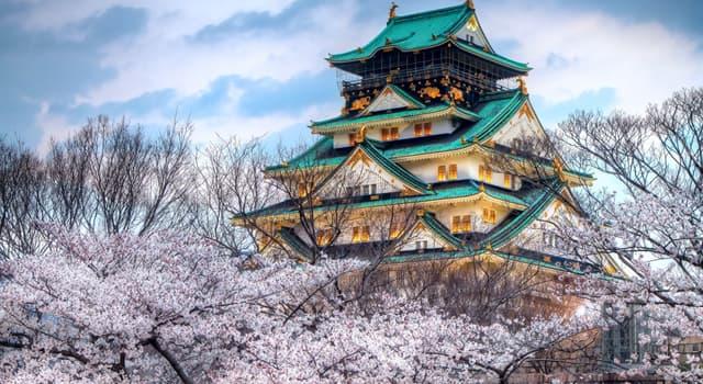 Kultur Wissensfrage: Stimmt es, dass es in Japan eine Steuer für übergewichtige Menschen gibt?