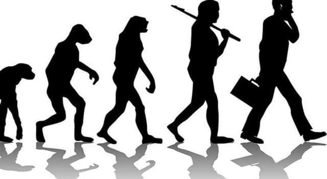 Wissenschaft Wissensfrage: Welcher Wissenschaftler ist durch seine Beiträge zur Entwicklung der Evolutionstheorie bekannt?