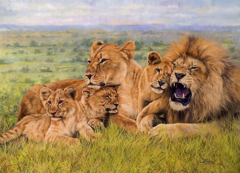 Natur Wissensfrage: Wie nennt man eine Gruppe der Löwen?