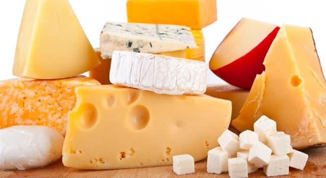 Культура Запитання-цікавинка: Який з цих видів сиру має плоску круглу форму і м'яку кремоподібну текстуру всередині?