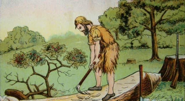 Geschichte Wissensfrage: Wer gilt als Vorbild für Daniel Defoes Figur Robinson Crusoe aus dem gleichnamigen Roman?
