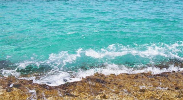 nauka Pytanie-Ciekawostka: Proces usuwania soli z wody morskiej jest znany jako?