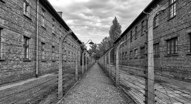 Історія Запитання-цікавинка: Трикутниками якого кольору позначали євреїв в Освенцімі?