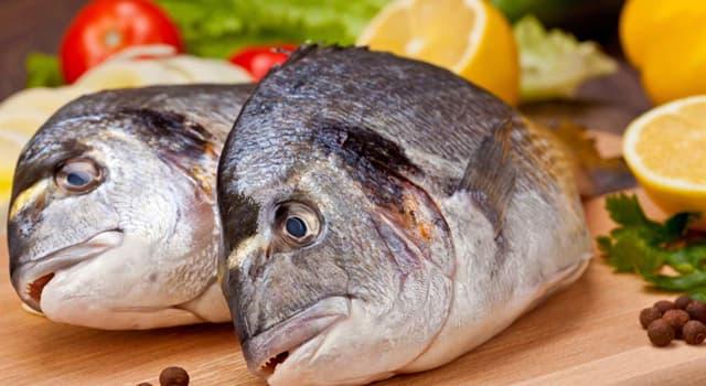 Cultura Pregunta Trivia: ¿Cuál de estos es un plato con pescado?