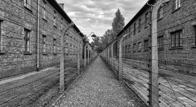 Geschichte Wissensfrage: Wie wurden die judischen Häftlinge in den Konzentrationslagern gekennzeichnet?