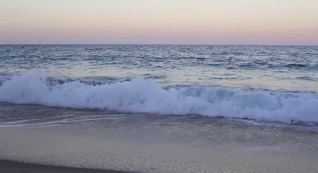 nauka Pytanie-Ciekawostka: Co powoduje pływy na oceanie?