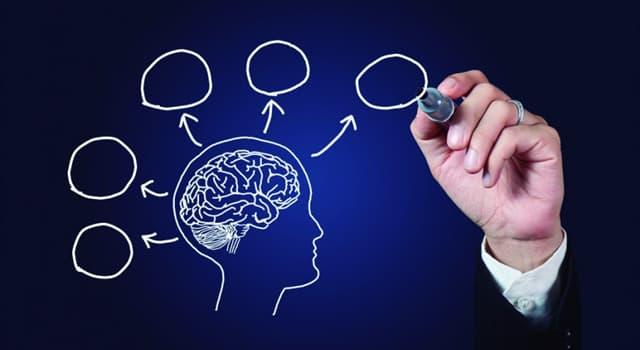 Наука Запитання-цікавинка: Головним проявом якого розладу є відсутність або зниження потреби в спілкуванні?