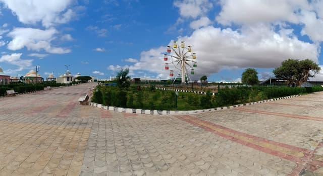 Географія Запитання-цікавинка: Яке місто є столицею Сомалі?