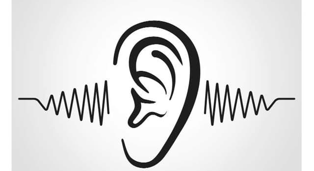 nauka Pytanie-Ciekawostka: Jaka była przyczyna najgłośniejszego na świecie nagrania dźwięku?