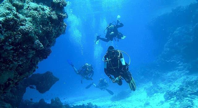 nauka Pytanie-Ciekawostka: Jaki gaz najlepiej stosować w połączeniu z azotem i tlenem do oddychania głęboko pod wodą?
