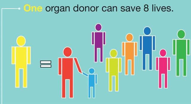 nauka Pytanie-Ciekawostka: Jaki jest najczęściej przeszczepiony narząd ludzki na świecie?