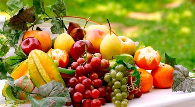 natura Pytanie-Ciekawostka: Jaki owoc przypomina kumkwat?