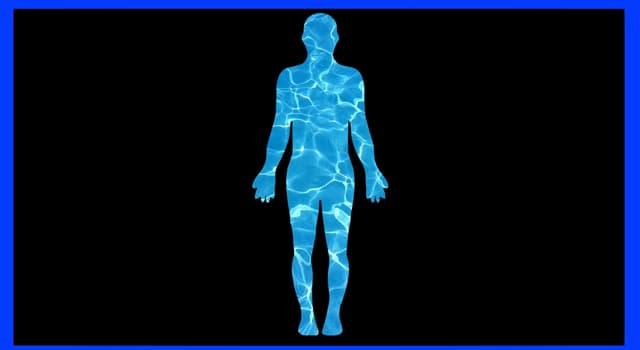 nauka Pytanie-Ciekawostka: Jaki procent wody zawiera przeciętne ciało ludzkie?