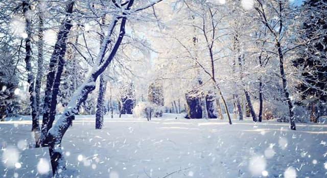 natura Pytanie-Ciekawostka: Jakiego koloru spadł śnieg na obszarze 1500 m² w Syberii 2 lutego 2007 roku?