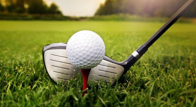 Спорт Запитання-цікавинка: Як називається підставка для установки м'яча перед ударом під час гри в гольф?