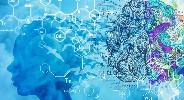 Наука Запитання-цікавинка: Як називається тимчасове уповільнення життєвих процесів організму під впливом сторонніх чинників?