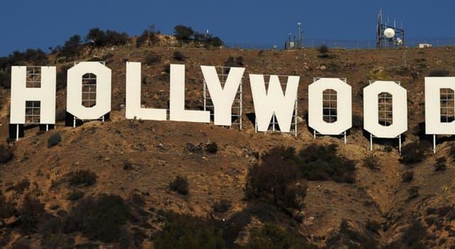"""Kultura Pytanie-Ciekawostka: Kto jest autorką powieści """"Żony Hollywoodu""""?"""