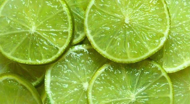 natura Pytanie-Ciekawostka: Limonki to zbierane wcześnie cytryny.