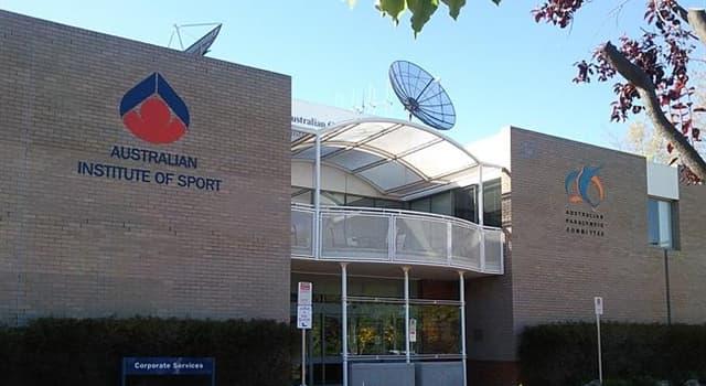 sport Pytanie-Ciekawostka: W jakim sporcie w Australii zespoły walczą o mistrzostwo w Sheffield Shield?