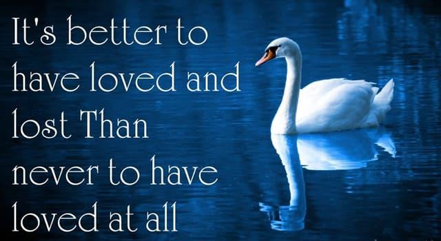 """Kultura Pytanie-Ciekawostka: W jakim wierszu Tennyson napisał: """"Lepiej kochać i to stracić niż nie kochać wcale""""?"""