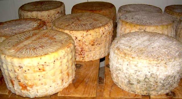 Культура Запитання-цікавинка: Що є інгредієнтом сардинского сира «Casu marzu»?