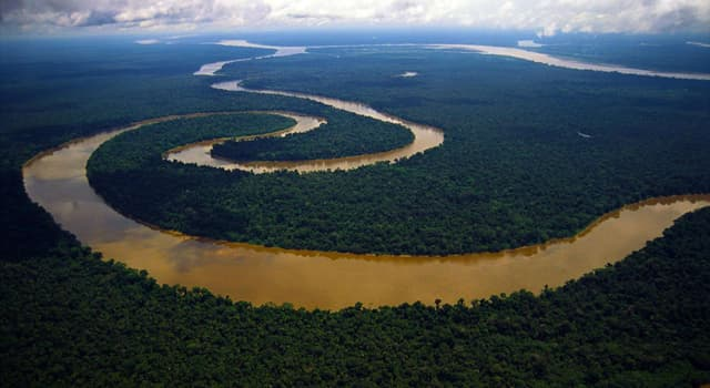 Geografia Pytanie-Ciekawostka: Ile mostów ma Amazonka?
