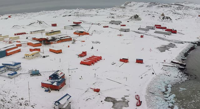 społeczeństwo Pytanie-Ciekawostka: Ile stałych mieszkańców ma Antarktyda?
