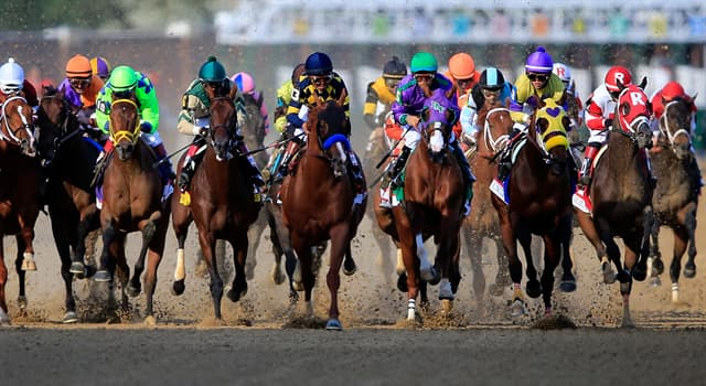Sport Trivia Question: In what US city is the Kentucky Derby held annually?