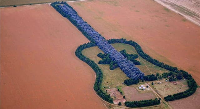 Culture Trivia Question: In which country will you find a guitar made from over 7,000 trees?