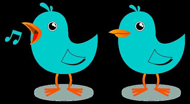 Kultura Pytanie-Ciekawostka: Jaki ptak, według mitologii, śpiewa tylko przed śmiercią?