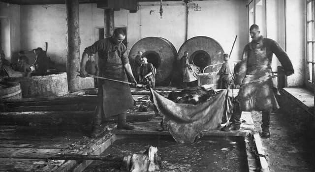 Історія Запитання-цікавинка: Як називали найбільший в СРСР виправно-трудовий табір на Соловецьких островах (1920-1930 рр.)?