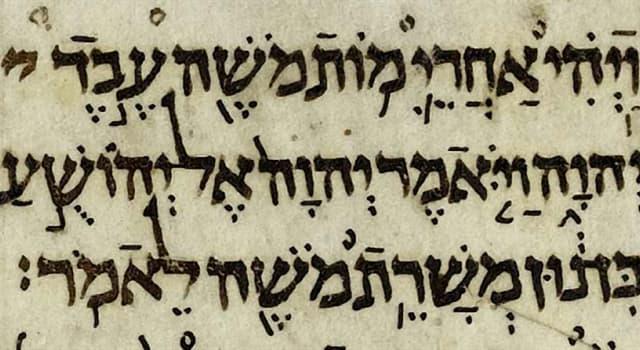 Kultura Pytanie-Ciekawostka: Która księga, zawierając tylko jeden rozdział, jest najkrótszą księgą Starego Testamentu?